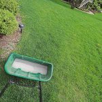 9 FAQs About Applying Starter Fertilizer to Your Lawn