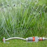 3 Tips For Watering Your Lawn in Baltimore, MD