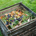 Composting 101: How to Start Your First Compost Pile