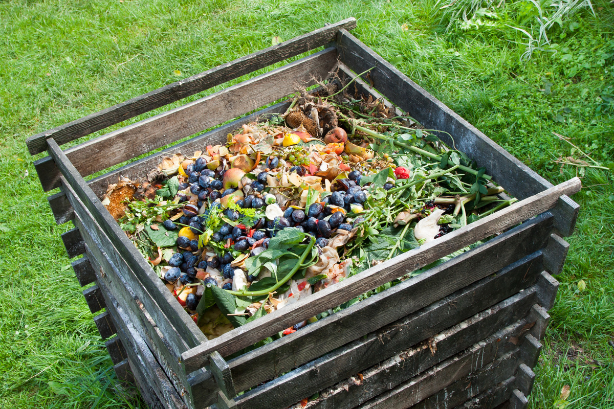 Waste Being Decomposed to be Used as Compost