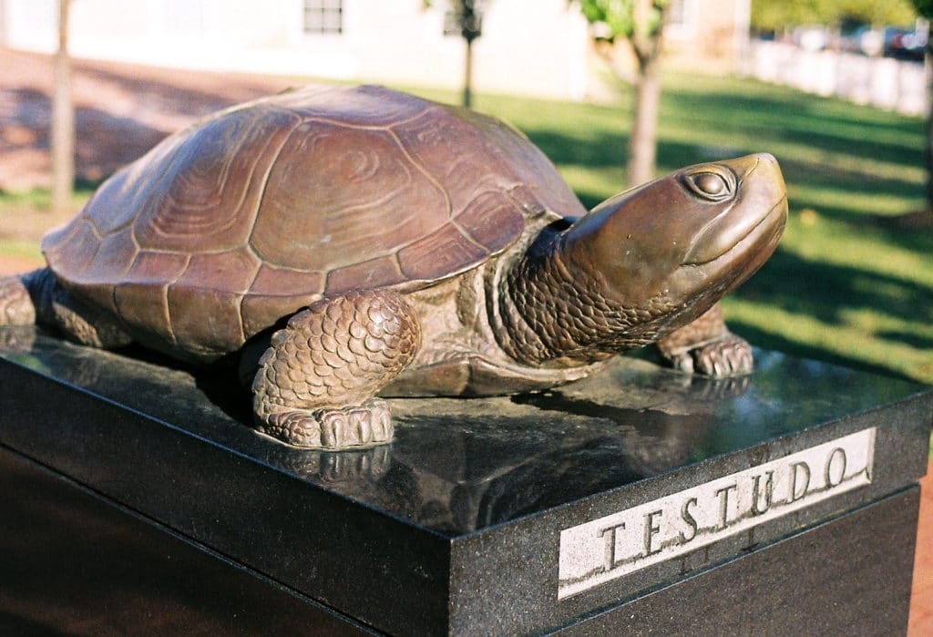 Tesudo the terrapin statue