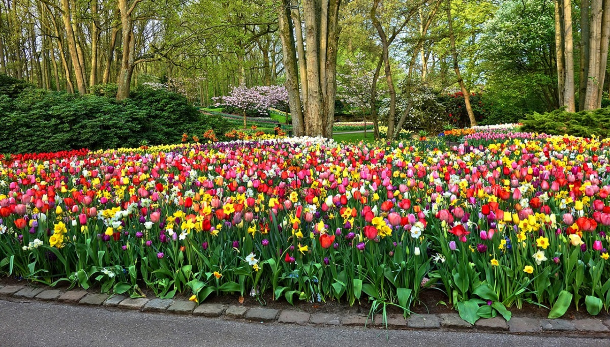 Colorful flower bed with pavers