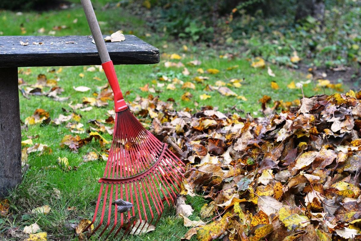 red rake leaning against a wooden bench beside a pile of fall leaves