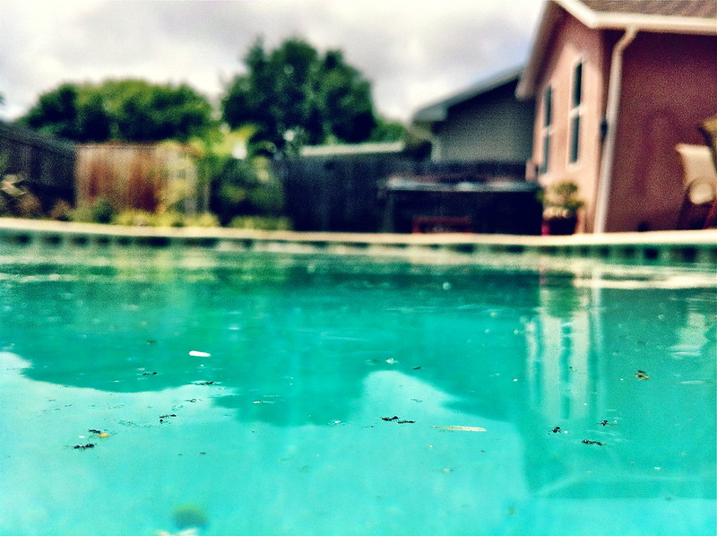 Dirty pool with debris