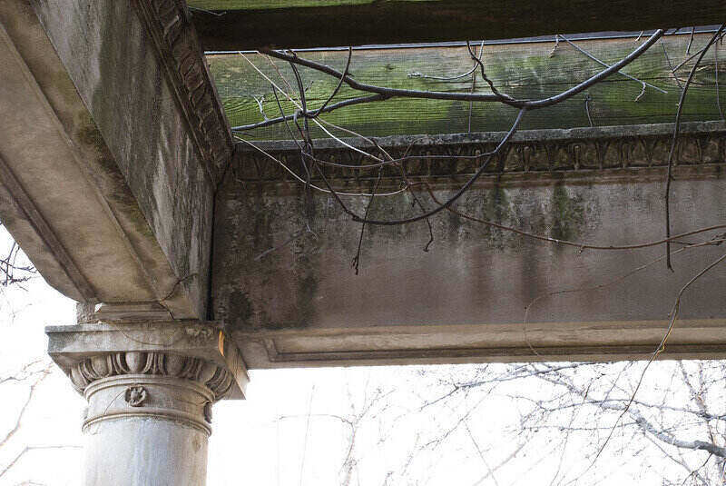 Concrete pillars and beams with mold on them
