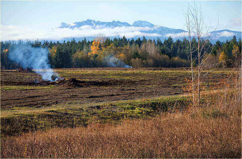 Land being cleared by burning the brush