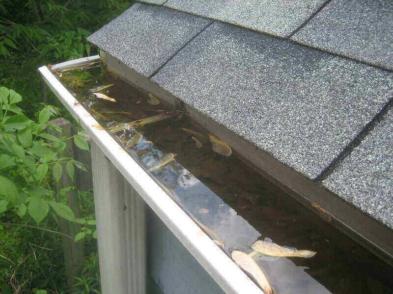 Clogged gutter that are full of water and not draining