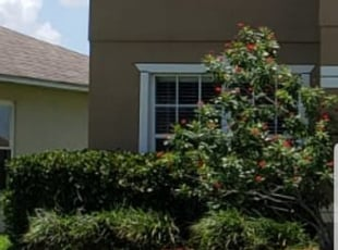 Orlando Fl Landscaping From 29 1 Landscapers Best Of 2021