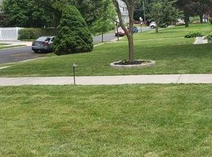 Burlington Wi Landscaping From 29 1 Landscapers Best Of 2021