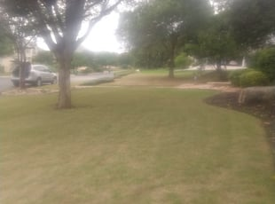 Canton Mi Lawn Care Service Lawn Mowing From 19 Rated Best 2021