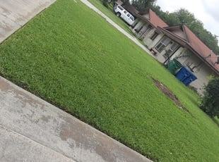 Corpus Christi Tx Landscaping From 29 1 Landscapers Best Of 2021