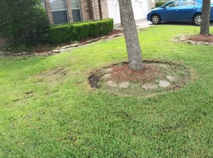 Desoto Tx Landscaping From 29 1 Landscapers Best Of 2021