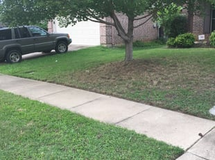 Kingwood Tx Landscaping From 29 1 Landscapers Best Of 2021
