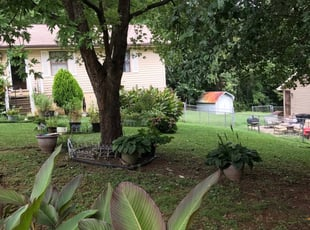Knoxville, TN Lawn Care Service | Lawn Mowing from $19 ...
