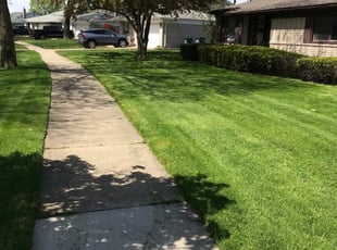 Lansdale Pa Lawn Care Service Lawn Mowing From 19 Rated Best 2021