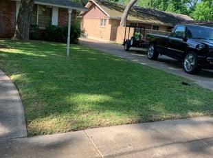 Mcallen Tx Lawn Care Service Lawn Mowing From 19 Lawnstarter