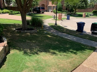 1 Midvale Ut Lawn Care Service Lawn Mowing From 19 Best 2021