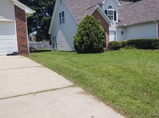 Newington Ct Lawn Care Service Lawn Mowing From 19 Rated Best 2021