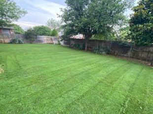 1 Philadelphia Pa Lawn Care Service Lawn Mowing From 19 Best 2021