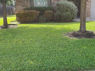 1 Salt Lake City Ut Lawn Care Service Lawn Mowing From 19 Best 2021