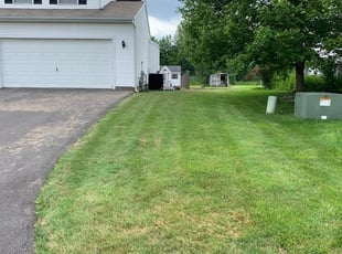 Thornton Co Lawn Care Service Lawn Mowing From 19 Rated Best 2021