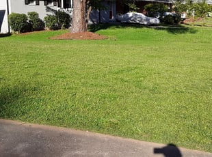 Waldorf Md Landscaping From 29 1 Landscapers Best Of 2021