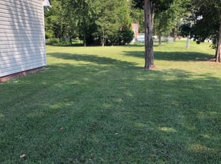 Wilton Ct Landscaping From 29 1 Landscapers Best Of 2021