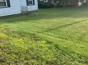 York Pa Lawn Care Service Lawn Mowing From 19 Rated Best 2021