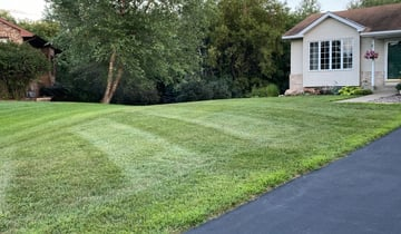 Carrollton Tx Lawn Care Service Lawn Mowing From 19 Rated Best 2021