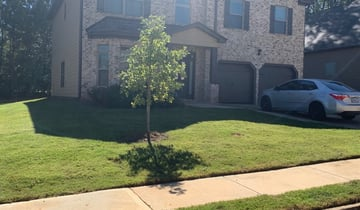 1 Conway Sc Lawn Care Service Lawn Mowing From 19 Best 2021