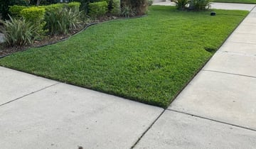 1 Gastonia Nc Lawn Care Service Lawn Mowing From 19 Best 2021