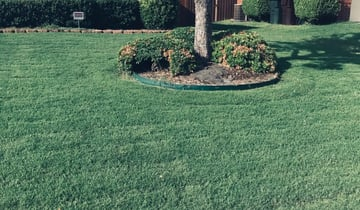 Plano Tx Lawn Care Service Lawn Mowing From 18 Best Of 2021