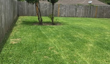 Williamsburg Va Lawn Care Service Lawn Mowing From 19 Rated Best 2021