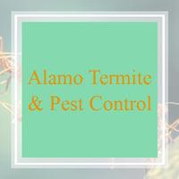 10 Best Pest Control Services In Fort Worth Tx Exterminators