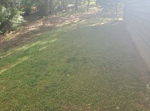 5 Best Lawn Care Services In Greenville Mi 2020 Lawnstarter