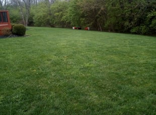 16 Best Lawn Care Services in Mason, OH 2020   LawnStarter