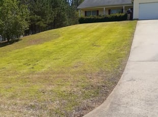 9 Best Lawn Care Services In Mcdonough Ga 2020 Lawnstarter