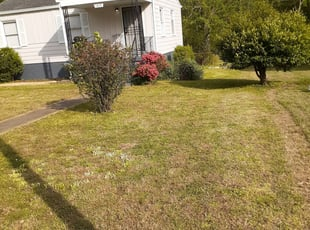 1 Sarasota Fl Lawn Care Service Lawn Mowing From 19 Best 2020