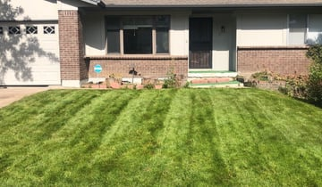 Baytown Tx Lawn Care Service Lawn Mowing From 19 Rated Best 2020
