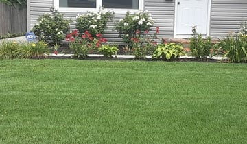 1 Columbus Oh Lawn Care Service Lawn Mowing From 19 Best 2020