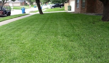 Conroe Tx Lawn Care Service Lawn Mowing From 19 Rated Best 2020
