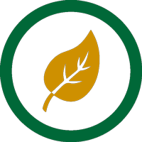 seasonality icon